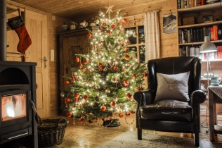 Christmas Tree in Hall, 1st day, 171216